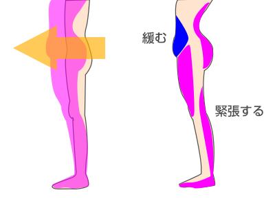 浮腫みの原因3、姿勢