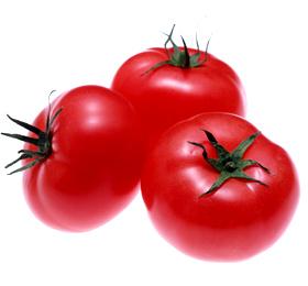 痩せ体質に!夜トマトダイエットが人気の理由