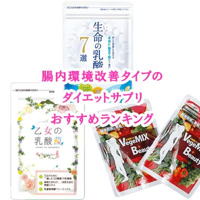 腸内環境改善タイプのダイエットサプリおすすめランキング